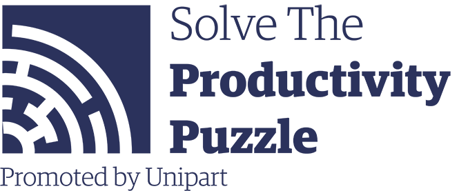 How to solve the Productivity Puzzle